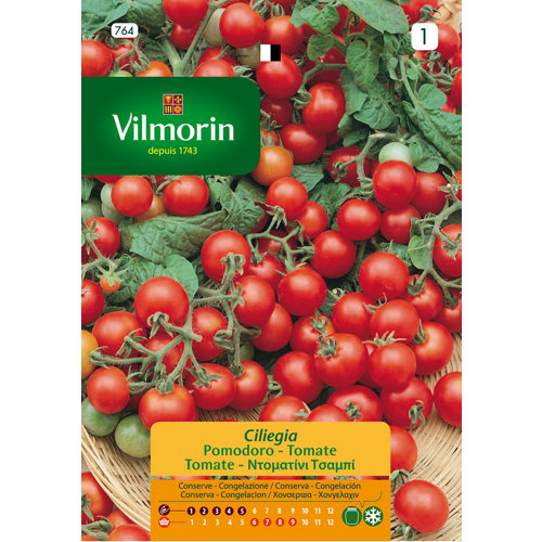 Semilla de tomate cereza