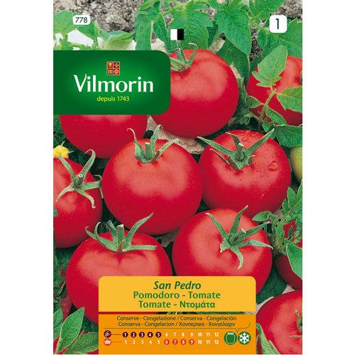 Semilla de tomate san pedro