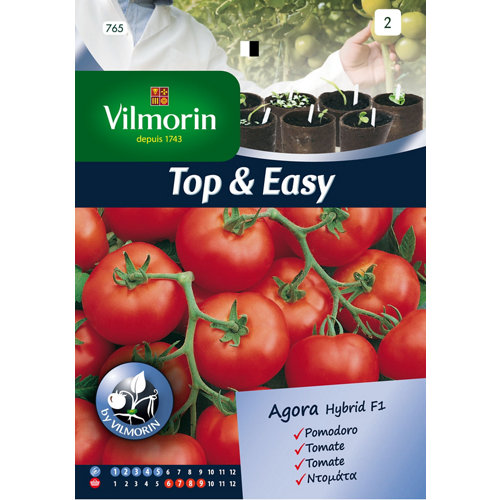 Semilla de tomate ágora