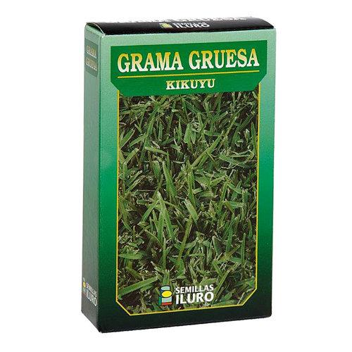 Césped grama gruesa iluro 0.1kg para terrenos de menos de 100 m²
