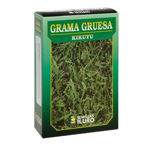 Césped grama gruesa iluro 0.25kg para terrenos de menos de 100 m²