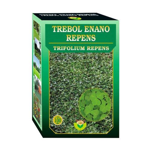 Césped trébol enano trifolium repens iluro 1 kg para terrenos de hasta 100 m²