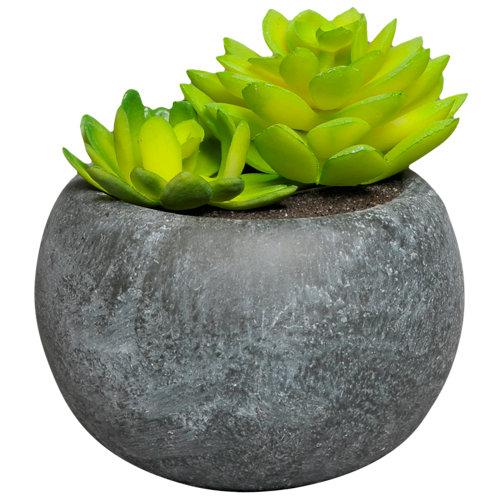Planta artificial en maceta cactus