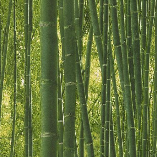 Papel pintado duplex bambú reality para 5,3 m²