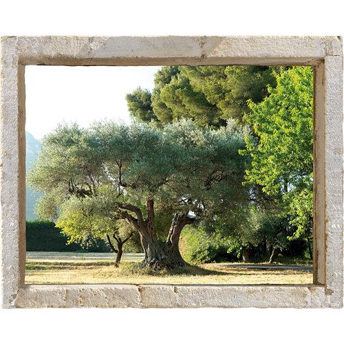 Vinilo mural olivares 60x75 cm