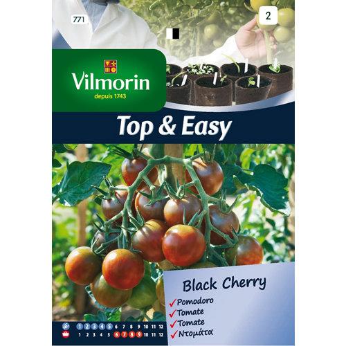 Semilla de tomate black cherry