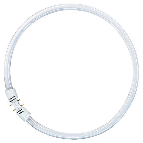 Tubo fluo circular t5 22w 6500k 10000h