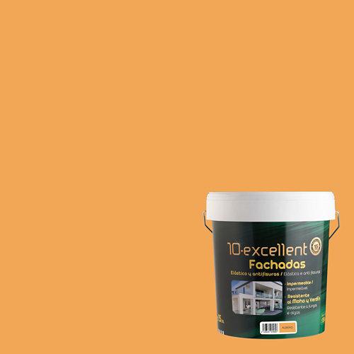 Pintura para fachadas elastica 10excellent albero mate 15l