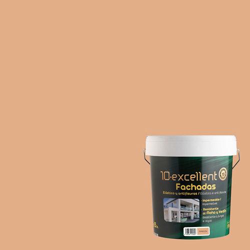 Pintura para fachadas elastica 10excellent gamuza mate 15l