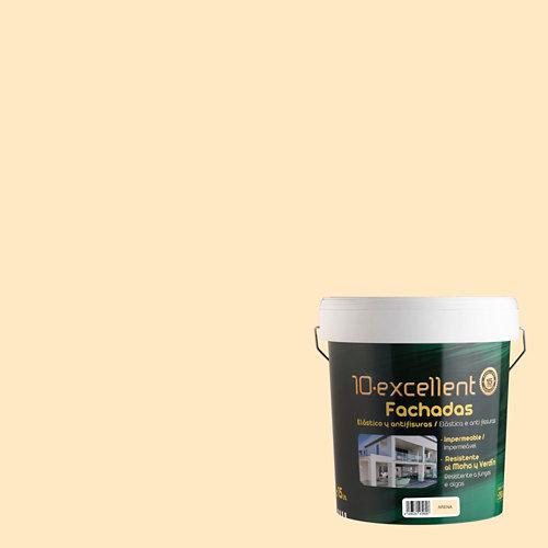 Pintura para fachadas elastica 10excellent arena mate 15l
