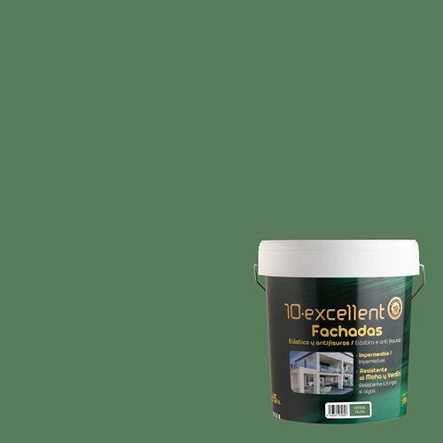 Pintura para fachadas 10excellent verde oliva mate 15l