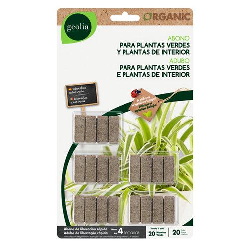 Varitas plantas verdes y de interior geolia para uso ecológico 8+2und gratis