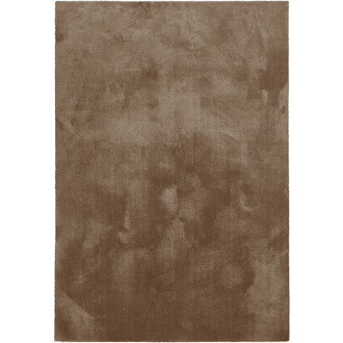 Alfombra marrón poliamida touch 080 200 x 290cm