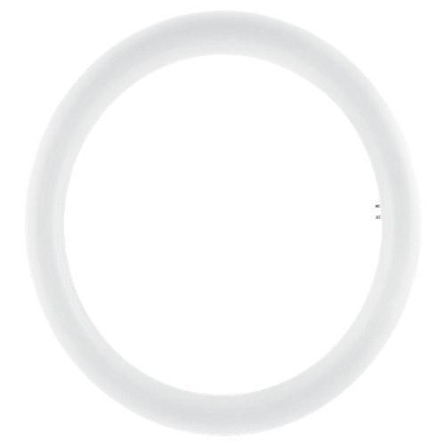 Tubo led t9 circular osram 20w fría 6500k 32