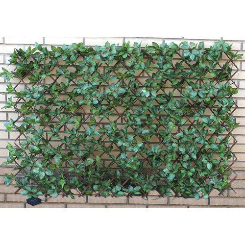 Celosía extensible de poliéster verde 100x150 cm