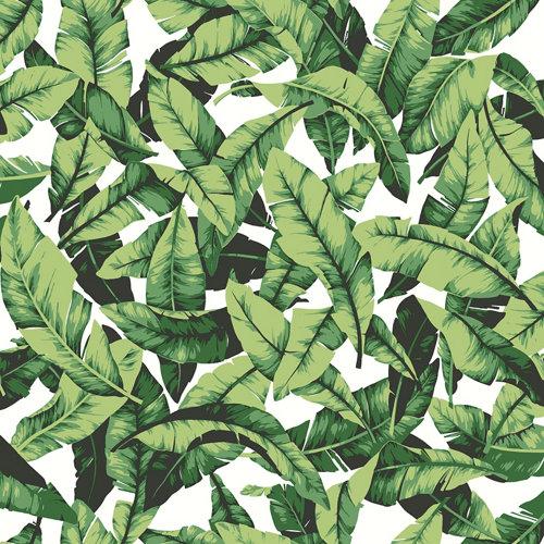 Papel pintado adhesivo hojas verde 2,6 m²