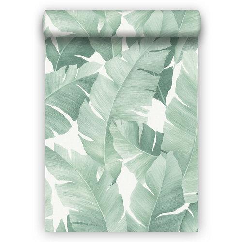 Papel pintado aspecto texturizado naturaleza botanical vert verde