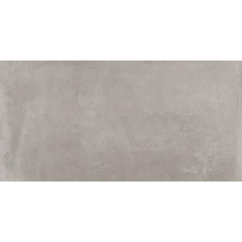 Pavimento powder argenta argent 60x120 rc