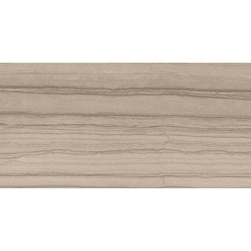 Pavimento silver argenta brown 60x120 rc