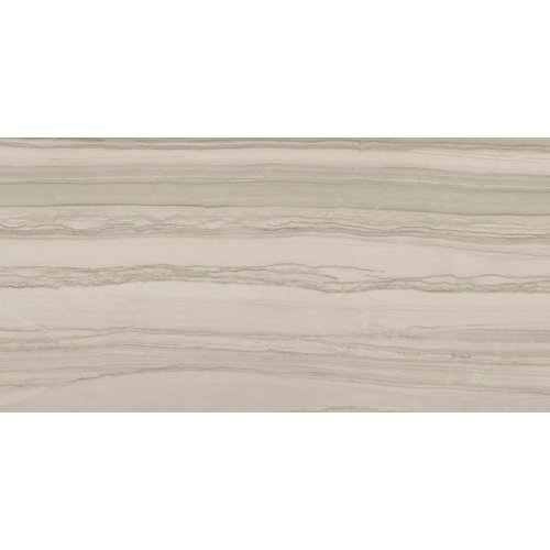 Pavimento silver argenta taupe 60x120 rc