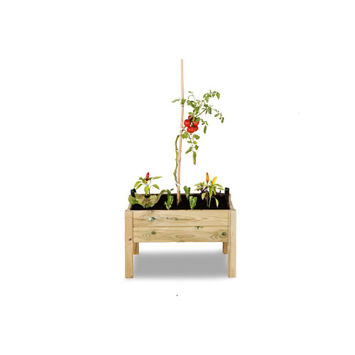 Huerto urbano kit leo de hortalia