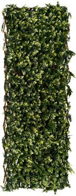Celosía extensible de mimbre verde 100x150 cm