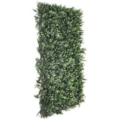 Celosía extensible de mimbre verde 50x150 cm