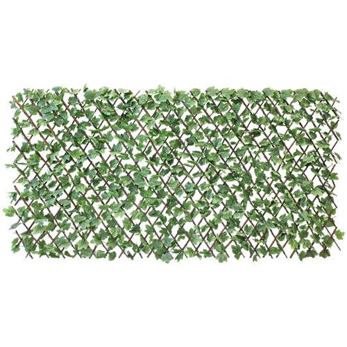 Celosía extensible de mimbre verde 100x200 cm