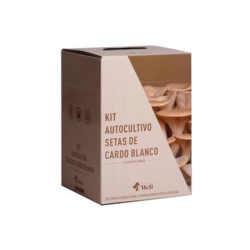 Kit autocultivo para setas ecológicas cardo blanco
