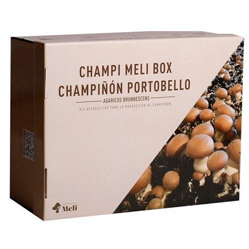 Kit autocultivo champiñón portobello
