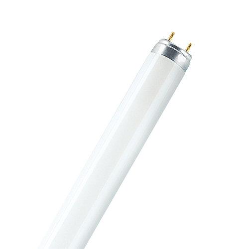 Pack 10 tubos fluorescentes regulables de 18w y tono de luz 8000k 1300 lm osram